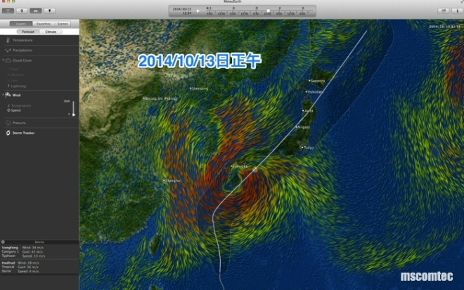 台風19_001