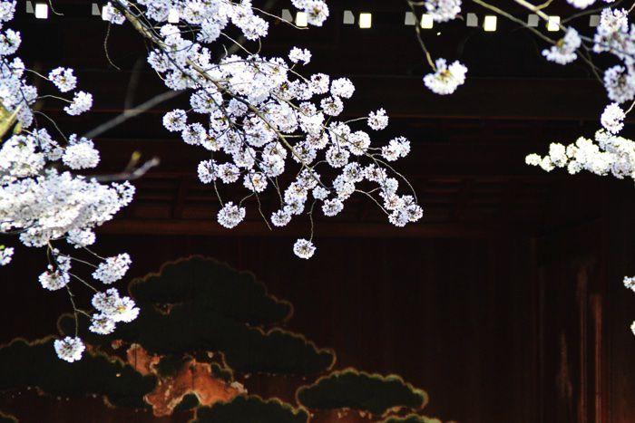 東京遊歩:靖国神社