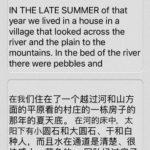 英語を通して中国語/iPhone翻訳App『Transwhiz English/Chinese(simplified)Dictionary』