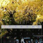 Mac App 『Swift Publisher 5』で作る12月のカレンダー:旧岩崎邸